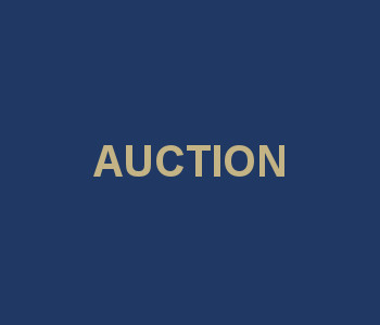 upcomming auction